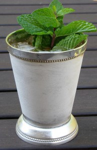 Mint Julip