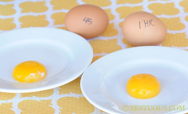 The Perfect Egg Yolk from Zestuous